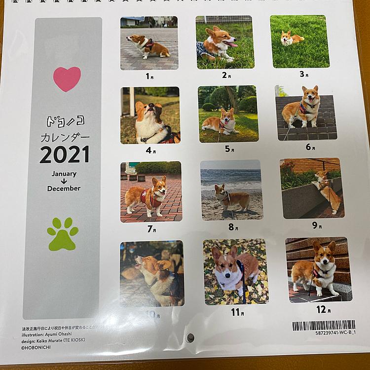 ドコノコさんのカレンダー届きました。
