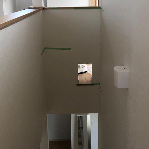 現在新居にキャットウォークを建設中(*^ω^*)  OSB合板を壁一面に貼り、好きな場所にステップを設置出来るようにしました☆