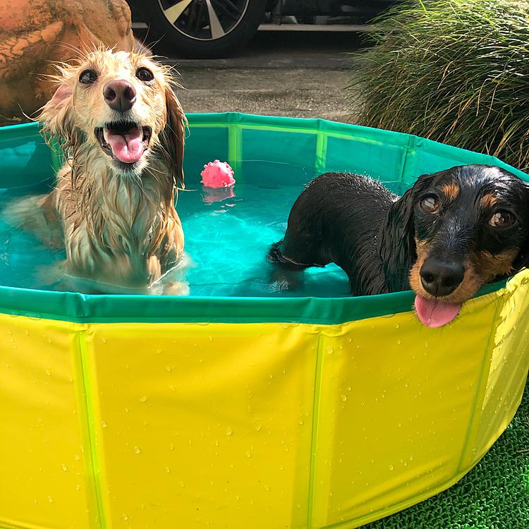 暑い☀️プールで遊びついでのお風呂🧼