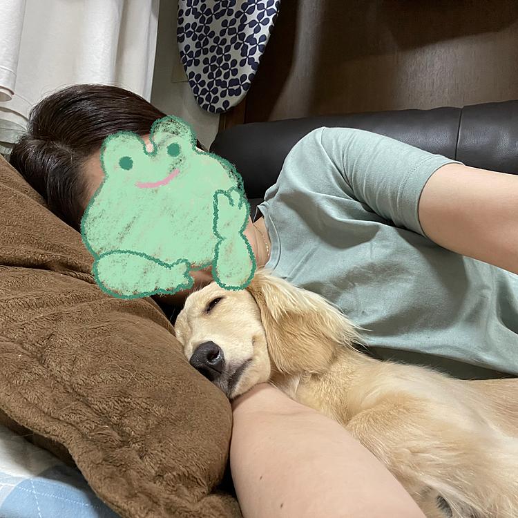 ぎっくり腰2日目‼️ 長時間じゃなければ、なんとか椅子に座る事もできる様になってきた😆 私の場合は横向きに寝ている時が一番腰への負担が少ないです。そして横には常にメルシー🐶 心配してくれるのは有り難いが、犬の体温は高く、熱くてしゃーない🥵