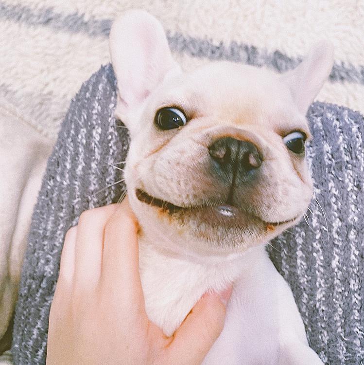 にんまり笑顔☀️